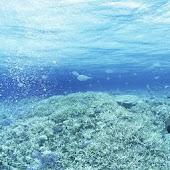 綺麗な海の壁紙素材vol.7