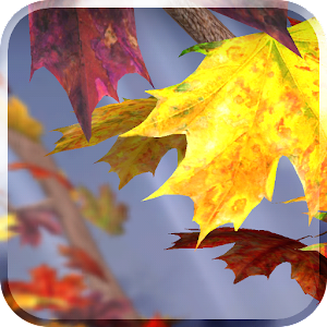 autumn-tree-free-wallpaper
