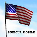3d USA Flag LiveWallpaper icon