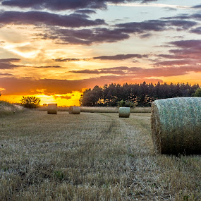 Sunset over fields by Lee Davison - Landscapes Sunsets & Sunrises ( sky, red, straw, sunset, hay bales, fields )