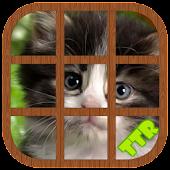 Kitten Sliding Puzzle