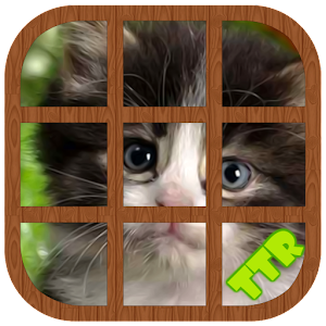 Kitten Sliding Puzzle for PC and MAC