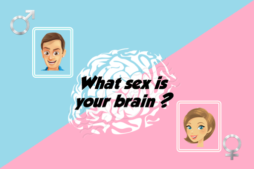 What sex is your brain