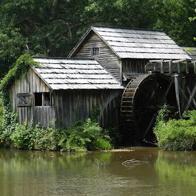 in the Smoky Mountains by Karen Jaffer - Buildings & Architecture Public & Historical
