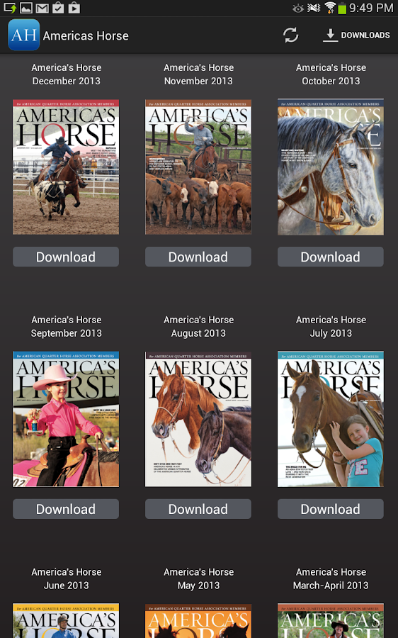 America's Horse - screenshot