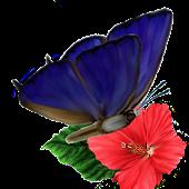 Flower Hop