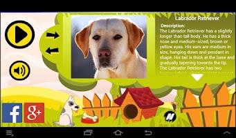 Screenshot of Best Dogs Sounds