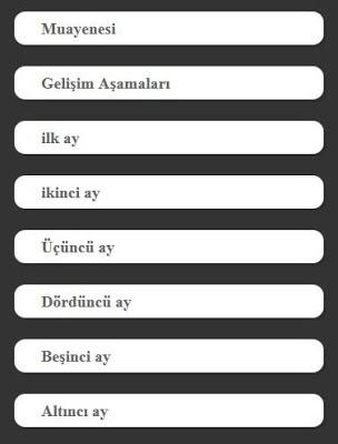 Yenidoğan Bebek Bakımı - screenshot