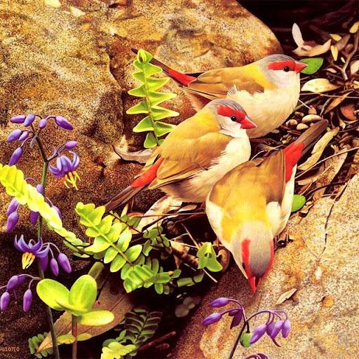 鳥ジグソーパズル
