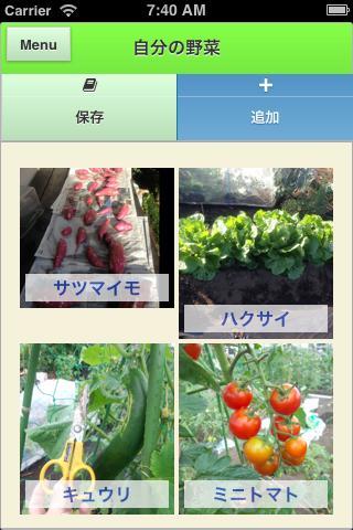 菜園観察日記