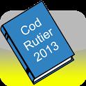 Noul Cod Rutier 2013 icon