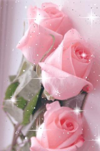 Pretty Pink Roses Live Wallpap Android App Screenshot