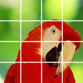 Puzzle Bird