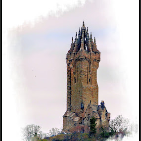 The wallace monument by Sandy Crowe - Buildings & Architecture Statues & Monuments ( stirling, scotland, monument, historical, wallace,  )