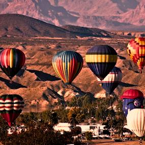 Balloons Over Havasu by Becky McGuire - News & Events Entertainment ( mcguire, desert, moods, colorful, happiness, vibrant, balloon, havasu, aviation, inspiration, tvlgoddess, january, emotions, arizona, hot, festival, air, mood factory, becky,  )