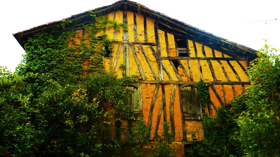 Home by Alexandra Rafaila - Buildings & Architecture Decaying & Abandoned ( old, building, village, wood, france, architecture, yellow, house, abandoned, decay, , colorful, mood factory, vibrant, happiness, January, moods, emotions, inspiration )