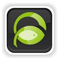 Fish Network logo
