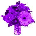 Purple Flowers Live Wallpaper icon