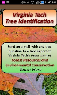 Virginia Tech Tree ID - screenshot thumbnail