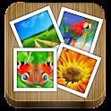 ViewPics Pro icon