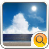 BEACH  Search Widget