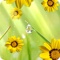 Fiori Live Wallpaper gratis icon