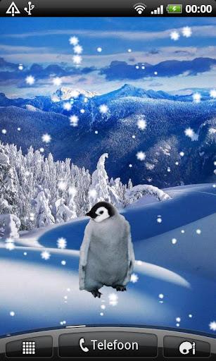 Emperor Penguin Sticker