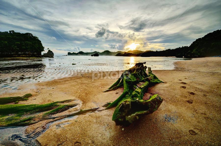 by Muhammad Tawfeeq - Landscapes Beaches ( kondang merak malang )