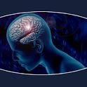 Beyin Egzersizi icon
