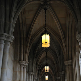 Never ending hall by Austin Lawler - Buildings & Architecture Architectural Detail ( lights, gothic, gothich architecture, stone, architecture, hallway )