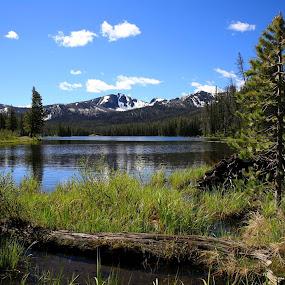 Yellowstone by Matt Padgett - Landscapes Mountains & Hills