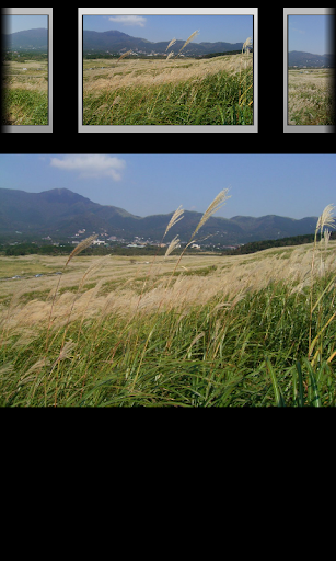 玩旅遊App|箱根仙石原ススキ草原(JP030)免費|APP試玩