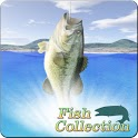 Fish Collection icon