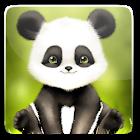 Panda Bobble Live Wallpaper icon