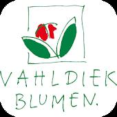 Vahldiek AG