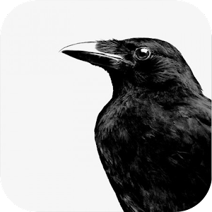 Crow Sound Bird Sounds   FREE Android app market