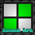 Squares Game of Life Sim