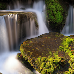 Smoky Mountains Cascade by Kenneth Keifer - Landscapes Waterscapes ( falling, flow, nature, pouring, dripping, newfound gap, moist, motion, wild, boulders, roadside, united states, rural, moss-covered, silky, cataract, appalachian, rolling stone, pours, stream, babbling, smooth, jumble, clinging, waterfall, appalachia, moss, blur, landscape, running, usa, smoky, spring, gathers no moss, refreshing, mountains, drips, creek, mossy, long exposure, wet, rocks, water, park, flowing, brook, green, verdant, tennessee, mountainside, smokies, blurred, wilderness, national park, great, splashing, cascade, falls, cascading, blurry, stones, whitewater )