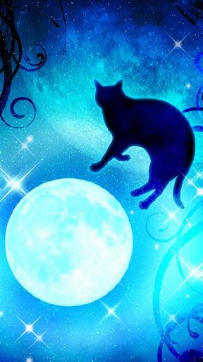 Moon&Blackcat Kirakira(FREE) 1.00 Windows u7528 1