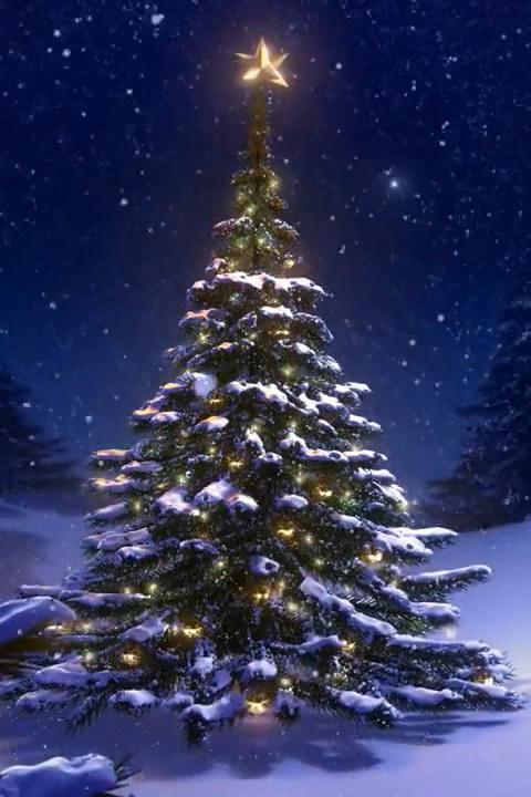 Christmas tree 3d wallpaper apk latest version download free christmas tree 3d wallpaper poster voltagebd Image collections