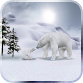 Arctic Home Live Wallpaper