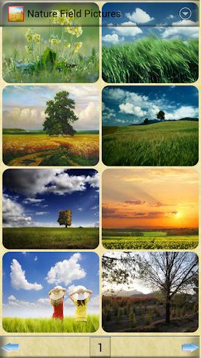 自然現場圖片