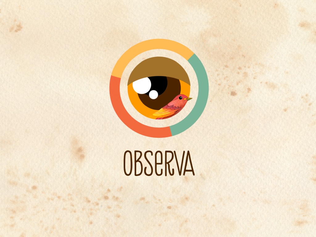 Observa- screenshot