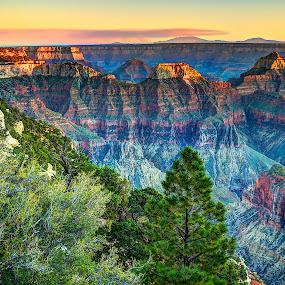 Grand Canyon-North Rim by John Larson - Landscapes Deserts ( mountains, nature, sunset, canyon, trees, rocks )