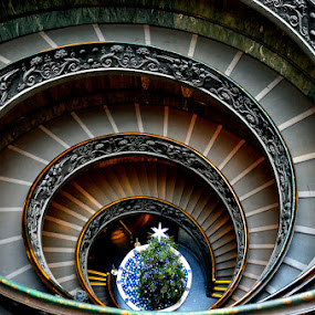 Staircase by Vinod Chauhan - Buildings & Architecture Public & Historical ( stairs, rome, staircase, vatican, chapel, spiral, architecture, italy )