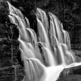Three Creek Falls by Steve Rogers - Black & White Landscapes ( flood, falls, waterfall, rapids, creeks,  )