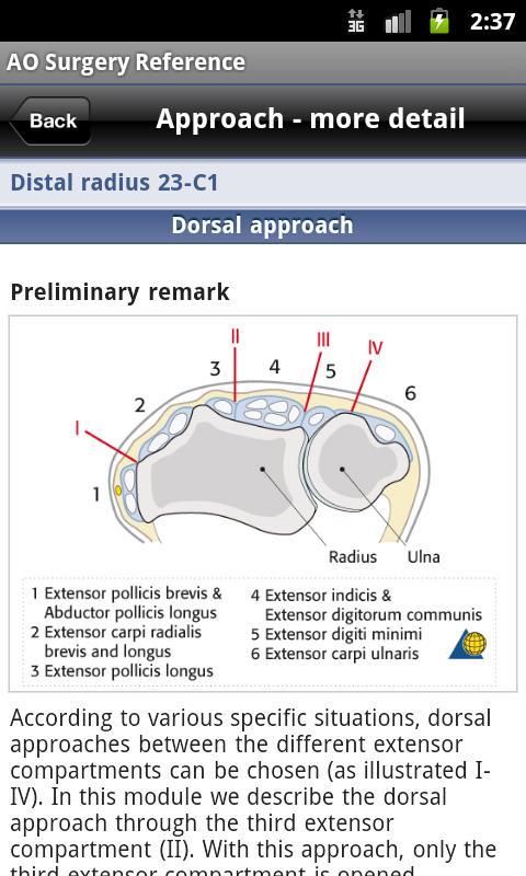 AO Surgery Reference - screenshot