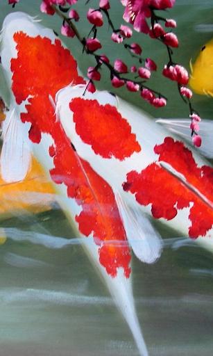 锦鲤动态壁纸