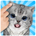 Talking Cat Funny Kitten Sound icon