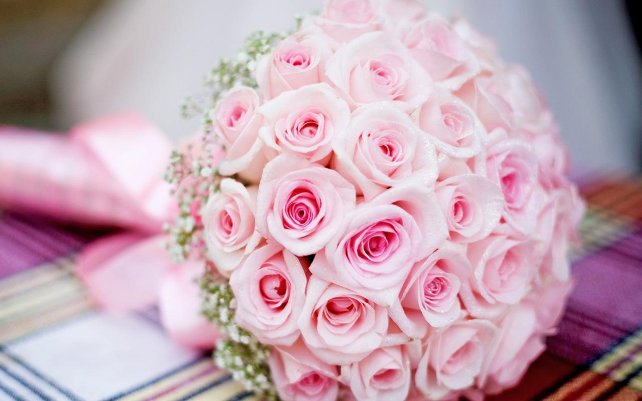 Pink Rose Live Wallpaper Google Play Store Revenue Download